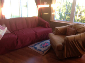Sofa (Couch) and Chair - FREE