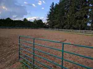 1 stall available soon! Horse boarding.