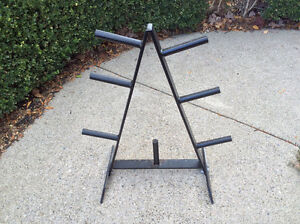 NOTHERN LIGHTS WEIGHTS TREE $60  Pick up in Oakville
