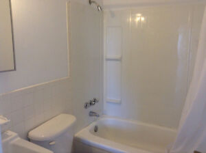 Newly Renovated 1 Bedroom for Rent Kingston Kingston Area image 3