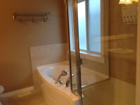 Bathroom renovation expert
