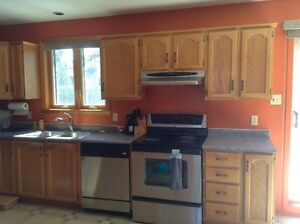 Kitchen cabinets- Everything include