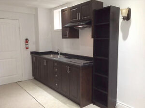 Professionally Finished Basement Apartment  For Rent In Milton
