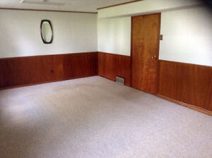 Very Large Basement Room for rent