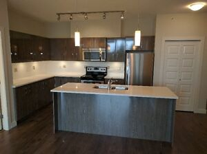 BRYDON COURT: BRAND NEW 2 BEDROOM RENTALS IN LANGLEY!