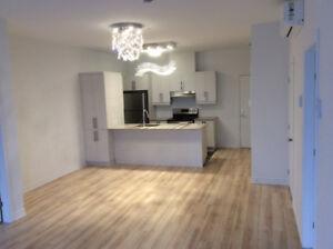 2 bedroom new condo Dix30 for rent