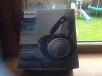 Philips SHP2500 6m headphones