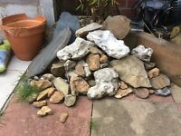 Large collection of rocks, reptile or fish
