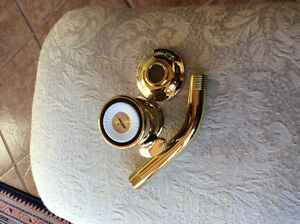 New Moen duel function shower head polished brass.