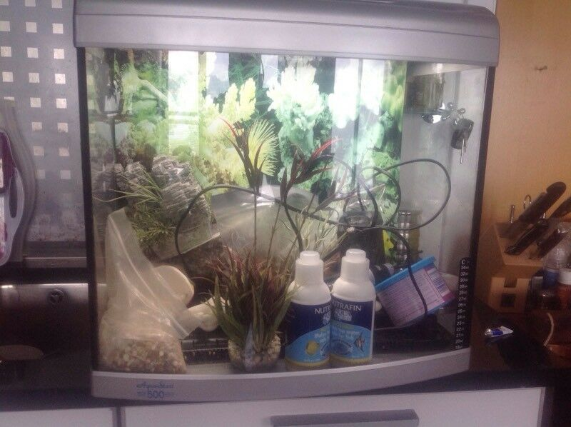 Fish tank Aqua One 65 litres with all you need.
