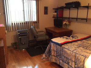 Bright  Study-ready furnished room, NON SMOKERS ONLY PLEASE! Kitchener / Waterloo Kitchener Area image 4