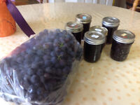 Delicious Grape Jelly or Jam