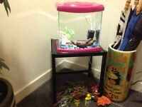 Fish tank in girly pink.