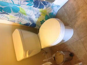 Toilet  compleet with cover