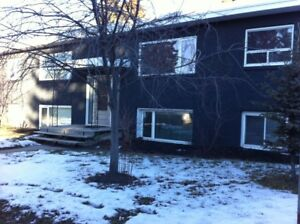 One bdrm lower suite in sought after Highland Park