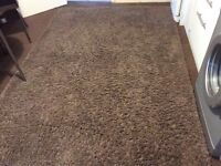 For sale shaggy rug