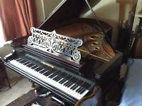 "Bechstein grand piano black 6'7"" model V"