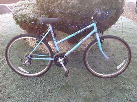 Raleigh Montana bike