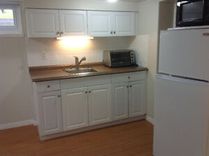 LOWER LEVEL BRIGHT & IMMACULATE CLOSE TO LANSDOWNE SEARS MALL