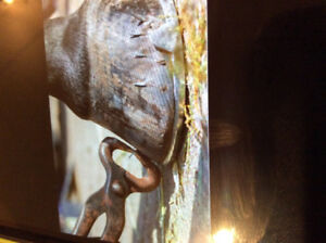 Farrier services,, shoeing and bare foot trims,,,wiling to trave