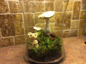 This delightful handcrafted terrarium  is sure to bring a smile.