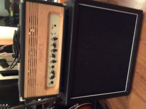 Phaez Sibly (two channel amp) and 1x12 cab/Cabinet