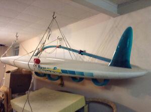 Planche à voile de marque F2 - Fun & Function - modèle lightenin