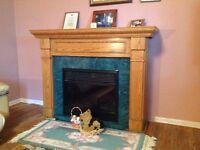 Fireplace and freezer