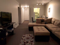 3 1/2 Apartment in Downtown Montreal Jan-May 2016
