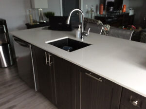 Ceaserstone Island Countertop with Blanco Granite Sink.