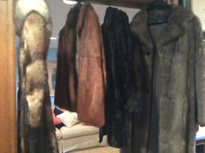 Four Fab Furs For Sale