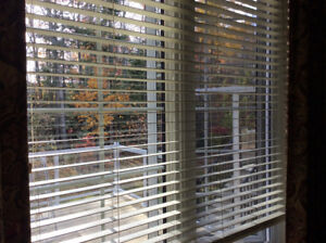 Faux wood blinds and pleated shades patio door