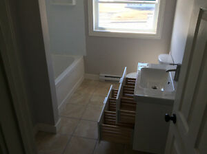 3 Bedroom completely renovated house available IMMEDIATELY St. John's Newfoundland image 5