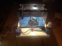 Small glass fish tank complete.