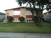 Lower Level 4-plex - Olds Alberta 40 minutes south of Red Deer