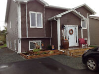 Available immediately: New 2 bedroom basement apartment in CBS