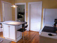 BEAUTIFUL- 4 BDR- HEATED 71/2 WITH 5 APPLIANCES IN OUTREMONT