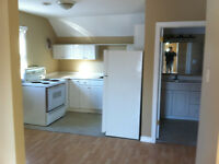 nice 2  bedroom apartment near maxwell and napier. All inclusive