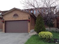 Base enti in Weston and Langstaff for rent