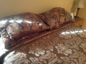KING SIZE COMFORTER/BED SPREAD/2 PILLOW SHAMS...JUST LIKE NEW!