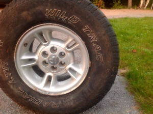 5 rims from  Dodge dakota  rims only without the tires
