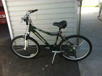 NEW SCHWINN SOTO BICYCLE