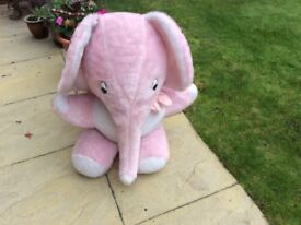 Nelly the elephant needs a home for xmas.