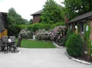 JUST LISTED!   COUNTRY SIZED PROPERTY! Windsor Region Ontario image 1