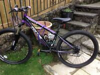 Sterndale forme ladies mountain bike