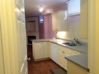 Large Luxury basement apartment for rent. Available October 15th