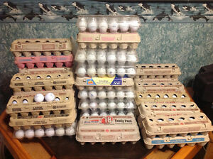 Experienced Golf Balls Windsor Region Ontario image 1
