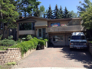 Spacious but cozy Bedsit in Charleswood
