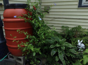 Fundraising With Rain Barrels Is Profitable This Spring