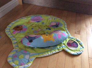 Miscellaneous Baby Items/ Toys (gently used)